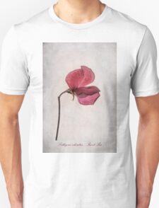 Lathyrus odoratus - Sweet Pea Unisex T-Shirt