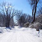 Snowy Road by Tom  Reynen