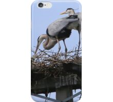 Herons in the Sun iPhone Case/Skin