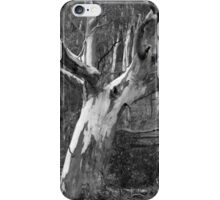 Scary Tree- Amber's Gully Walk iPhone Case/Skin