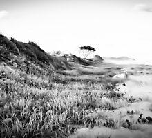Byron Bay, Australia  by lawrence Fawcett