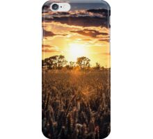 Sunset over Fields of Barley iPhone Case/Skin