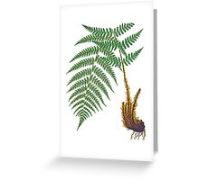 TIR-Fern Greeting Card