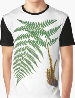 Vintage - TIR-Fern Graphic T-Shirt