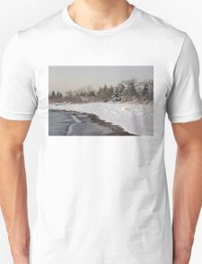 The Snow Just Stopped - a Winter Beach on Lake Ontario Unisex T-Shirt