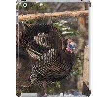 Turkeys feeding on corn iPad Case/Skin