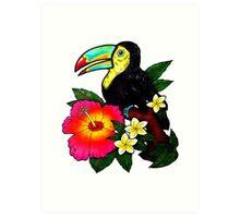 Tropical Toucan (Colour) Art Print