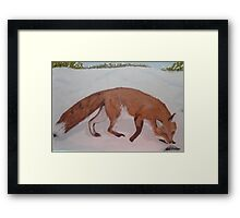 Red Fox, nosing a Push-up, Painting Framed Print
