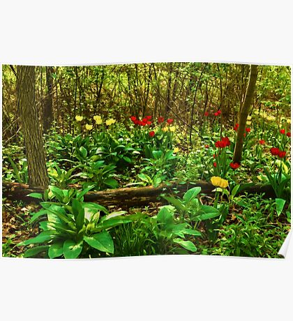 Green, Yellow and Red - Tulip Forest Impressions  Poster