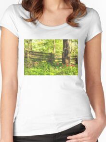 Impressions of Gardens - Colorful Tulips and a Rustic Fence Women's Fitted Scoop T-Shirt