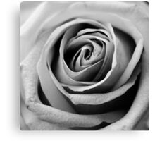 BW Rose Canvas Print