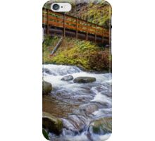 Oneonta Creek Bridge iPhone Case/Skin