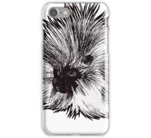 Graphic Porcupine iPhone Case/Skin