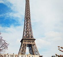 The Eiffel Tower by Ewan Arnolda