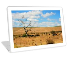 The Paddock - South Africa Laptop Skin