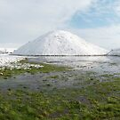 Silbury Snow and Springs (1) square by Steve Marshall