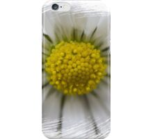 white daisies in spring iPhone Case/Skin
