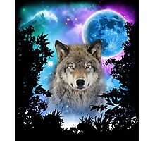 Timber Wolf MidNight Forest Photographic Print