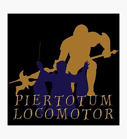 Piertotum locomotor Q Photographic Print