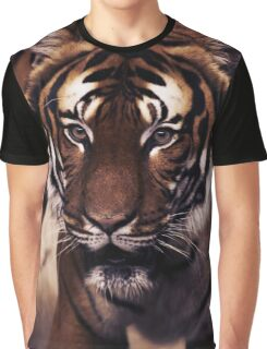 tiger, siberian tiger Graphic T-Shirt