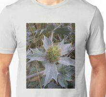 Sea Holly - Eryngium maritimum Unisex T-Shirt