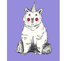 Unhappy Party bear. Photographic Print