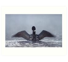 Blur - Common loon Art Print