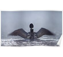 Blur - Common loon Poster