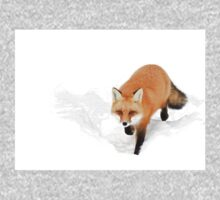 Red Fox - Algonquin Park Kids Tee