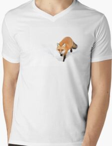 Red Fox - Algonquin Park Mens V-Neck T-Shirt