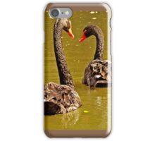 Black Swans iPhone Case/Skin