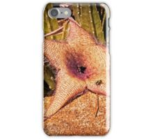 The House of Flies iPhone Case/Skin