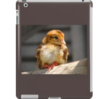 Adorable Chick iPad Case/Skin