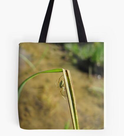 The spider thinks about his next move Tote Bag