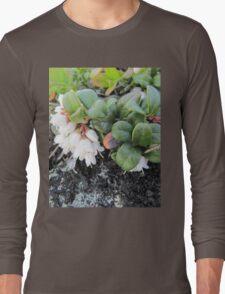 White small lingonberries flowers Long Sleeve T-Shirt