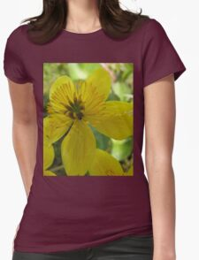 Beautiful buttercup in nature Womens Fitted T-Shirt