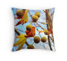 AutumnTree - Margaret River, Western Australia Throw Pillow