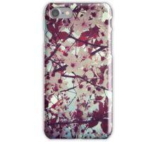 Spring - pink flowers iPhone Case/Skin