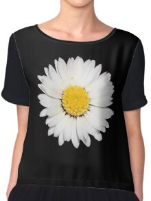 Nine Common Daisies Isolated on A Black Background Chiffon Top