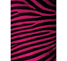 Pink Leather skin of zebra patterned background Photographic Print