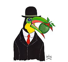Toucan With Bowler Hat and Apple Photographic Print