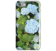 French Hydrangea iPhone Case/Skin