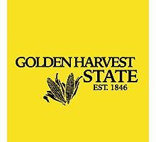 Golden Harvest State 2 Photographic Print