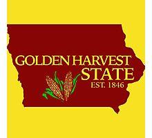 Golden Harvest State Photographic Print