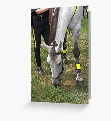 Police horse Greeting Card
