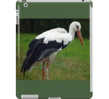 Stately bird iPad Case/Skin