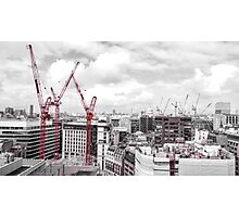 Red Cranes Photographic Print