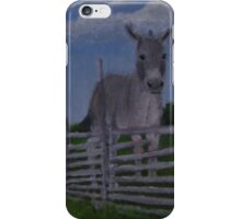 A Donkey for Stubbornness iPhone Case/Skin