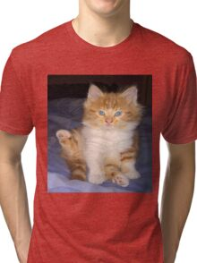 baby gizmo  kitten cleaning Tri-blend T-Shirt