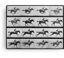 Muybridge Horse Photographic Horse Motion Study Canvas Print